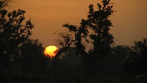 sunrise SN